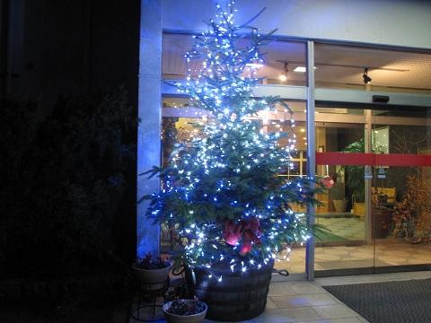 20091201クリスマスツリー