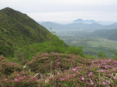 2010.05.28泉水山付近から由布岳を望む