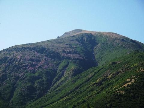 2010.06.11星生山のミヤマキリシマ