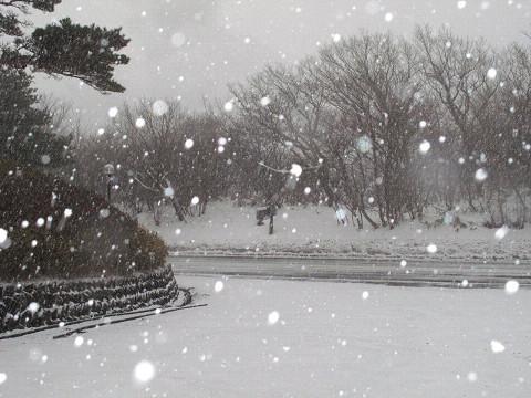 2011.01.29道路状況