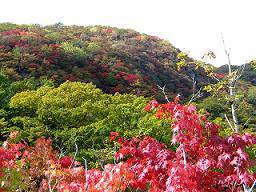 紅葉の黒岩山20071026