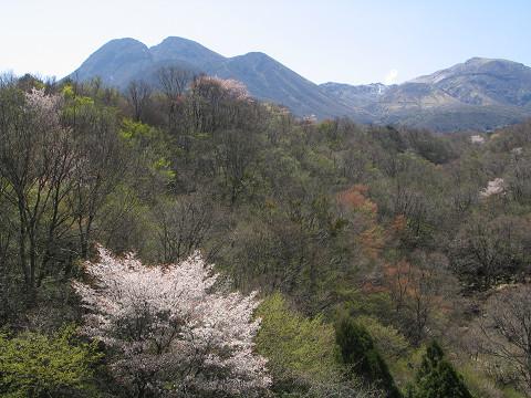 春の九重連山 2009.04.19