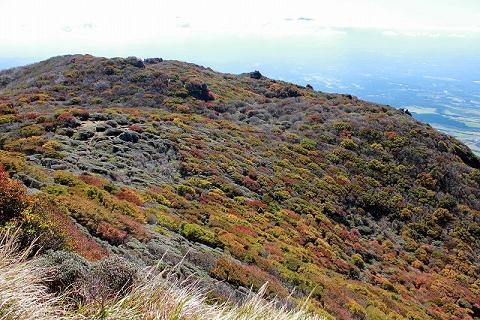 大船山山頂付近2013.10.17