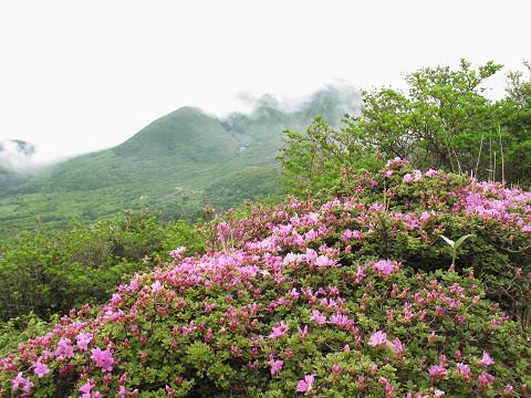 黒岩~泉水1 2011.05.27