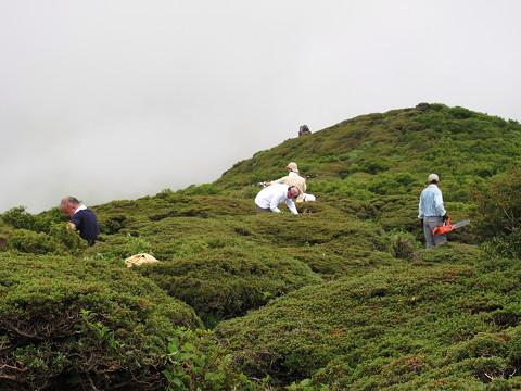 平治岳の作業1 2011.7.13