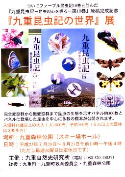 昆虫展チラシ
