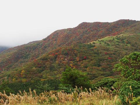 牧ノ戸峠紅葉1 2011.10.14