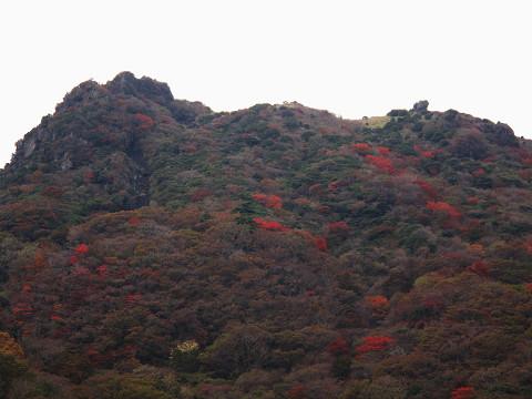 黒岩紅葉2 2011.10.24