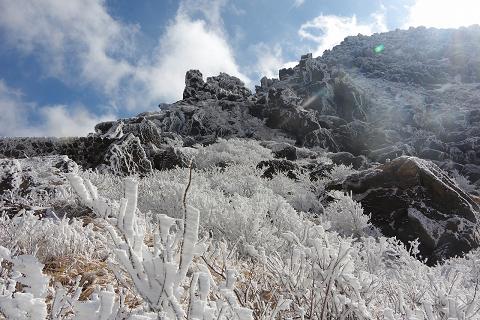 霧氷2015.1.8