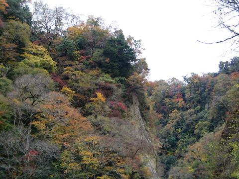 九酔渓 2011.11.10
