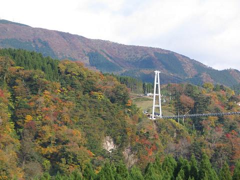 大吊橋 2011.11.10