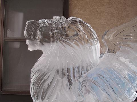 氷フェスタ2015.1