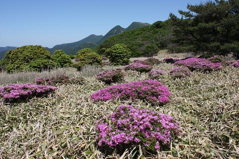 黒岩山2 20150604