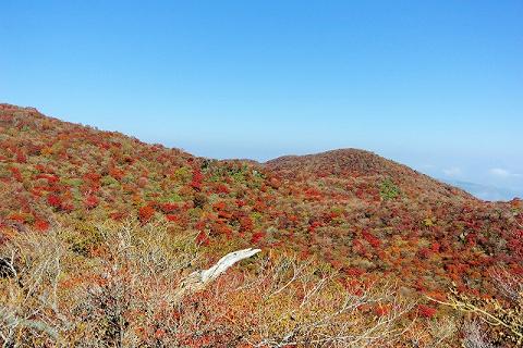 天狗岩山頂付近2015.10.21
