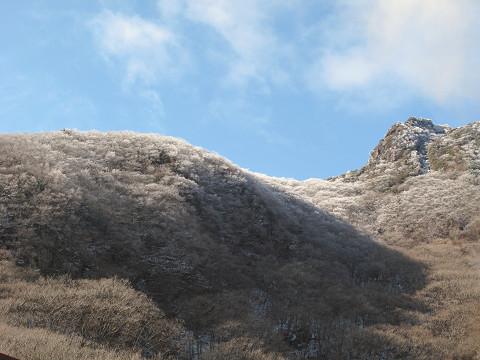 霧氷2011.12.30