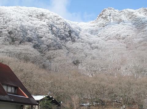 霧氷 2012.2.11