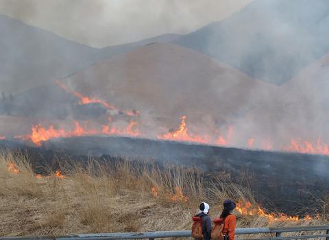 泉水山麓の野焼き 2011.4.3