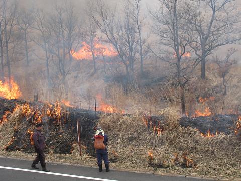 泉水山麓野焼き2011
