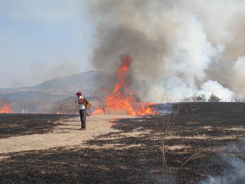 野焼き1 2012.3.29