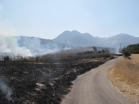 野焼き2 2012.3.29