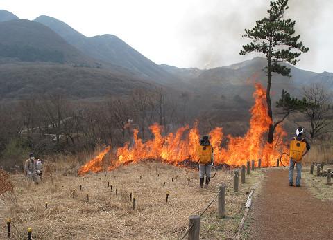 野焼き2012.4.19
