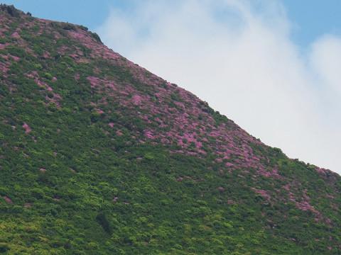 平治岳南峰2012.6.3