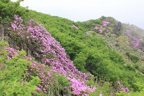 三俣西峰2012.6.13