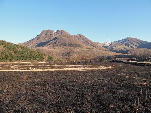 タデ原湿原2012.4.7