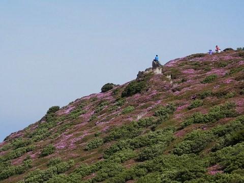 平治岳山頂付近2013.5.26